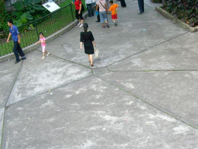 2007/7/22